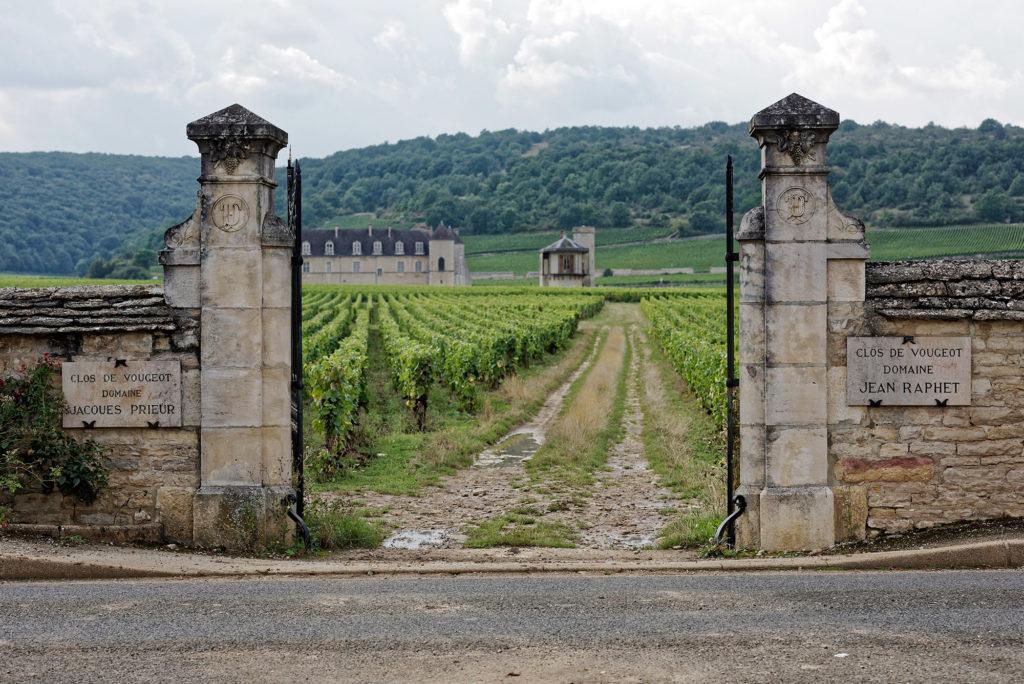 Die Weinlage Clos de Vougeot im Burgund mit Zufahrt und Schloss im Hintergrund